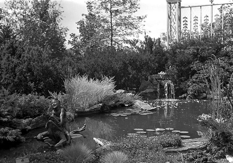gardens-boy-frog.jpg