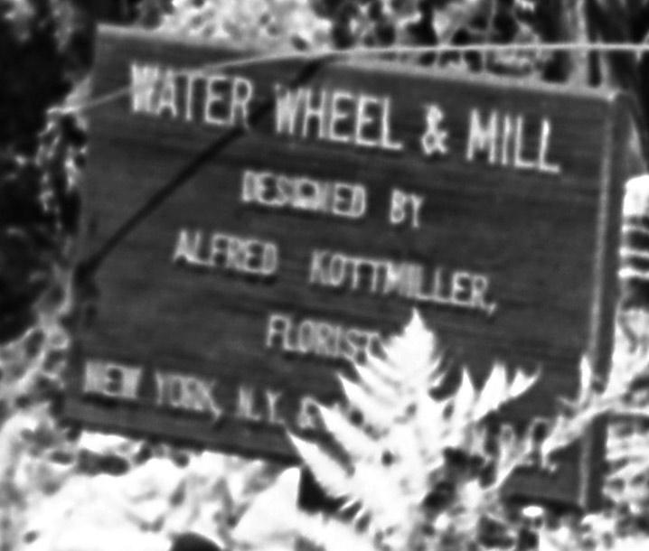 water-wheel-2.jpg