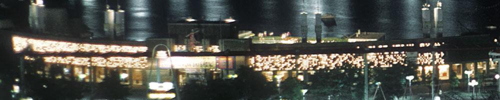 lake-amusement-night-2.jpg